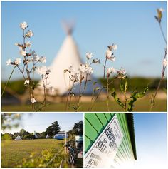 Deepdale Camping, the perfect spot to enjoy the beautiful North Norfolk Coast in a tent or campervan. Of course you could try one of our Glamping options - Tipis, Yurts and Shepherds Huts