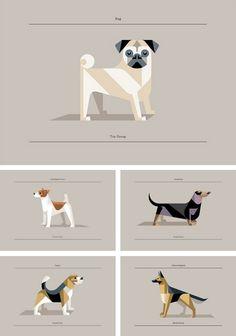 Josh Brill dog prints | http://breathnaigh.tumblr.com/post/32257636041/explore-blog-josh-brills-brilliant