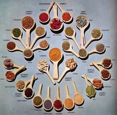 Herb & Spice Families: