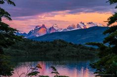We are flying to Patagonia! Yes, the famous Patagonia! Chile, Patagonia, Places To Travel, Places To Go, Torres Del Paine National Park, Seen, World Traveler, Vacation Destinations, South America