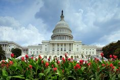 House passes Article V rule change - Convention of States