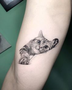 15 of the The Coolest Cat Tattoos on Instagram