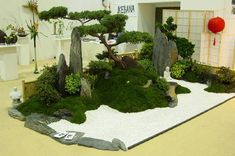 der kleine Japangarten                                                       …