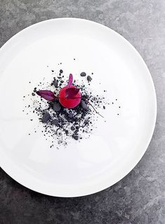 Ronny Emborg | Beetroot ice cream with liquorice soils