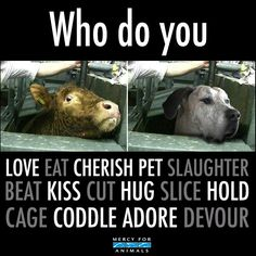 don't eat, slaughter, beat, cut, slice, cage, devour, go #vegan and love, cherish, pet, kiss, hug hold, coddle and adore