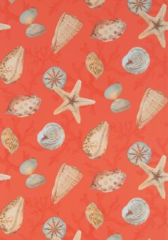 CLEARWATER, Coral, T5761, Collection Biscayne from Thibaut
