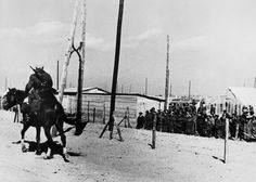 March Between Argeles-sur-Mer and Le Barcares. Exiled Republican soldiers and civilians//Robert Capa Nerja Spain, Magnum Photos, Civilization, Old Photos, Spanish, War, France, Horses, Pictures