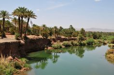 Zagora Desert Tour from Agadir Desert Tour, Desert Oasis, Dubai, Destinations, Cheap Travel, North Africa, Lonely Planet, Cairo, Day Trip