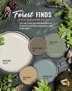 Benjamin Moore Forest Green Paint Color Scheme - Interiors By Color Green Paint Colors, Paint Color Schemes, Exterior Paint Colors, Paint Colors For Home, Wall Colors, House Colors, Green Color Schemes, Interior Color Schemes, Green House Color