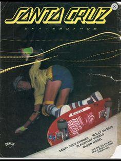 Santa Cruz Skateboards!  www.santacruzskaboards.com