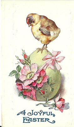 Embossed Easter Postcard with a Chick Unused