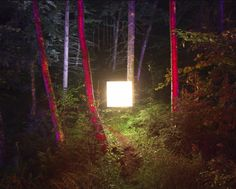 Benoit Paillé - Alternative Landscapes - Un cubo di luce inserito in un paesaggio naturale