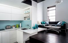 Small living space and kitchen