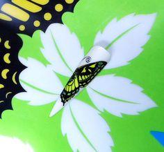 ....ala di farfalla in tema con lo sfondo.....