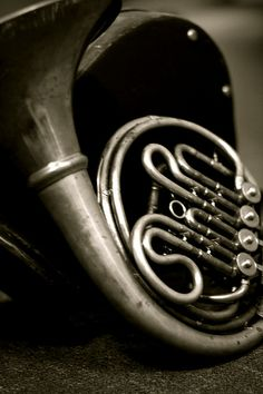 Beautiful French horn