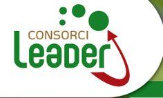 Consorci Leader Urgell – Pla d'Urgell Superfície: 905,30 km2   Població: 70.713 habitants Densitat de població: 78,11 hab/km2 Municipis:37