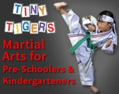 Best martial arts program for 4-6 year old's in the North Dallas area