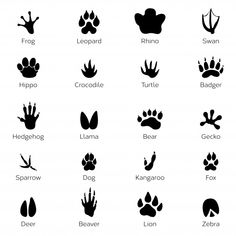 pet paw print art - Awesomely Cute Paw Print Clip Art Designs You'll Instantly Love Paw Print Clip Art, Cat Paw Print, Kitty Tattoos, Cat Tattoo, Tatuajes Animal Print, Cat Paw Drawing, Animal Footprints, Animal Tracks, Stock Foto