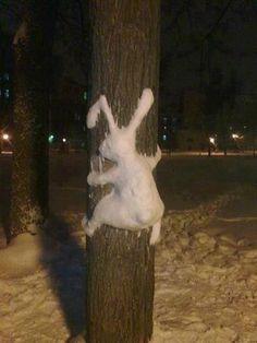 Sportlicher Schneehase