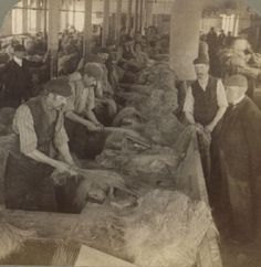 Flax Hackling, Belfast Ireland, The website for this photo is a treasure trove of information on the history of flax farming, production, spinning and weaving. Spinning Wool, Spinning Wheels, Flax Fiber, Plant Fibres, Native Beadwork, Textiles, Hello Kitty Wallpaper, Irish Eyes, Belfast Ireland