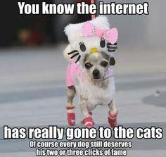 Whippet REAL Good Felpa con cappuccio Felpa con cappuccio per cane cucciolo carino Top Cool Divertente Regalo Di Compleanno
