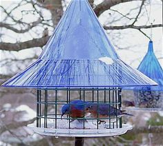 Sky Cafe Bluebird Feeder by Arundale