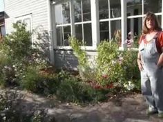 ▶ Permaculture in Canada - An Urban garden Part 1 - YouTube