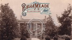 Visitor's Guide to Belle Meade Plantation- Nashville    Belle Meade Plantation   5025 Harding Pike   Nashville, Tennessee 37205    9AM-5PM