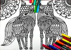 Fox Coloring page, with many details, complex drawing to color, full of possibilities , color therapy! Attached we have 5 pictures for you print and