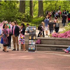Public Witnessing in Central Park, New York City (Credit: @swordgideon300)
