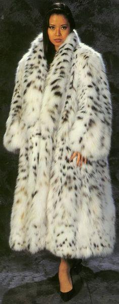 Lovely Lynx