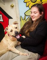 Sweet Angel is still looking for her furever home. Oct. 2014. Mobile, AL  www.animalrescuemobile.org