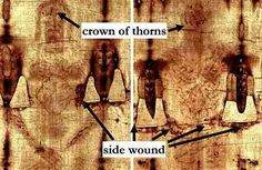 Key Facts About the Shroud of Turin: 1. The sharply bounded pixels that make up the body image cannot be duplicated by any known process today.  2. Darkness on the cloth is inversely proportionate to the body surface's distance from the cloth... results in the 3-D nature ... 3. Blood stains are exactly correct as modern medicine would expect to see from a crucified victim. 4. Scourge marks approximately 120... 5. Travertine aragonite dust found in Jerusalem is found on the feet, knees…