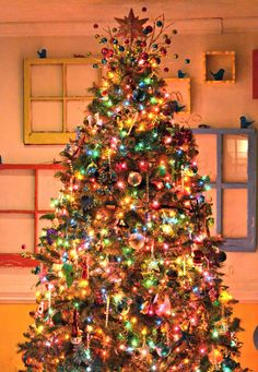 Brings your Christmas Mood Alive! So shiny and bright. So well designed w DIY Old Windows on the back wall!