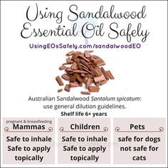 Using Sandalwood Essential Oil Safely Sandalwood Essential Oil, Essential Oils, Pregnant And Breastfeeding, Pet Safe, Animals For Kids, Get Over It, 6 Years, Aromatherapy, Natural Remedies