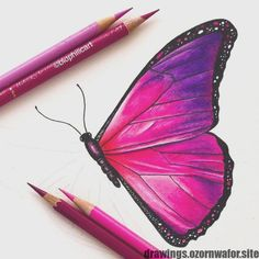 This is my pink version of a blue Morpho! - COLORING BOOK PAGES - Pink Butterfly! This is my pink version of a blue Morpho! Cool Art Drawings, Pencil Art Drawings, Bird Drawings, Realistic Drawings, Art Drawings Sketches, Colorful Drawings, Drawings Of Butterflies, Drawing Heart, Butterfly Drawing