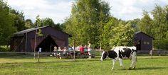 Het Betere BoerenBed, Dwingeloo, Drenthe, Nederland,  http://www.supertrips.nl/hotels_nederland/boerenbed-drenthe