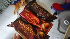 My dog looks at the three flavors of Magnum Ice Cream Bars: Classic, Almond and Chocolate Truffle.