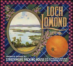 Strathmore, Tulare County, CA - Loch Lomond Scottish Castle Orange Citrus Fruit Crate Box Label Advertising Art Print. Vintage Labels, Vintage Ads, Vintage Branding, Vintage Prints, Orange Crate Labels, Vegetable Crates, Loch Lomond, Orange Fruit, Printing Labels
