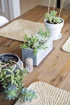 Sukkulenten als permanente Tischdeko? Perfekt. #pflanzenfreude