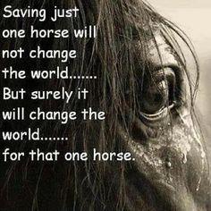 Save 'Em