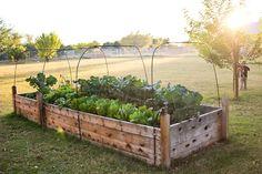 Foute link. maar voorbeeld van moestuin in hoogte. Raised garden beds how to - Finley and Oliver