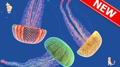 Meduzzza.io game gives you the opportunity to become a jelly fish Have you ever thought of becoming a jelly fish? Well, Meduzzza.io game give you the option