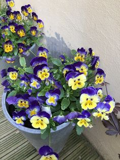 Floral Wreath, Wreaths, Home Decor, Harvest, Floral Crown, Decoration Home, Door Wreaths, Room Decor, Deco Mesh Wreaths