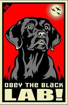 If Shepard Fairey Joined PETA: Obey The Pure Breed Posters & Merchandise