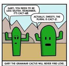 52 Best English Grammar Memes Images Grammar Memes Grammar