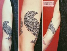 Raven tattoo on hand blackwork by Tatyana Zabolotnova