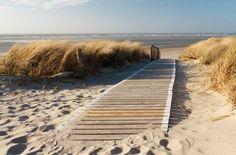 L'île de Föhr :  Les activités proposées sont larges : sports nautiques, golf, tennis, thalasso...Le paysage se redessine perpétuellement au gré des marées. Seules restent immuables, les maison Frisonnes, aux toits de chaume, qui font le charme de cette station balnéaire.