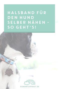 Mein Gott, hat dieser Hund einen hohen Halsbandverschleiß. Ich weiß nicht wie er es anstellt, aber alle Nase lang ist eine Schnalle kaputt oder das Band total aufgeribbelt. Fehlt nur noch dass er das Halsband nicht mehr tragen mag. Damit diese Idee gar nicht erst aufkeimt, gibt es für ihn nur das Beste: ein selbstgenähtes …