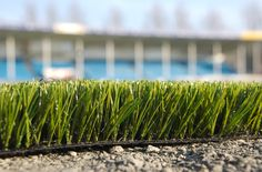 """The Pros and Cons of Artificial Lawns"""